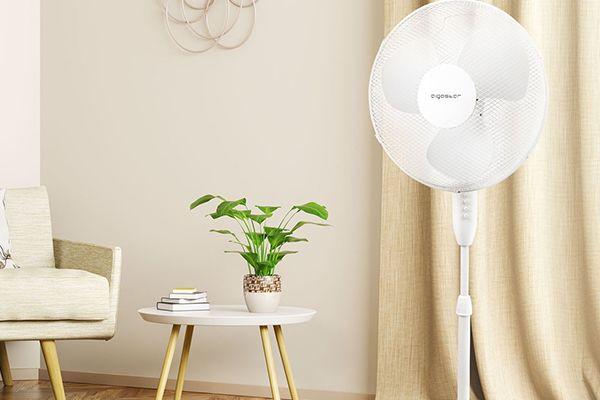 Los 4 mejores ventiladores de pie para 2021 | Comparativa
