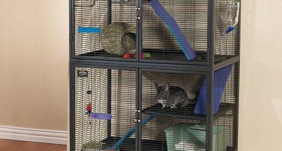 Las 6 Mejores jaulas para roedores 2021 – Comparativa